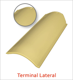 Terminal Lateral